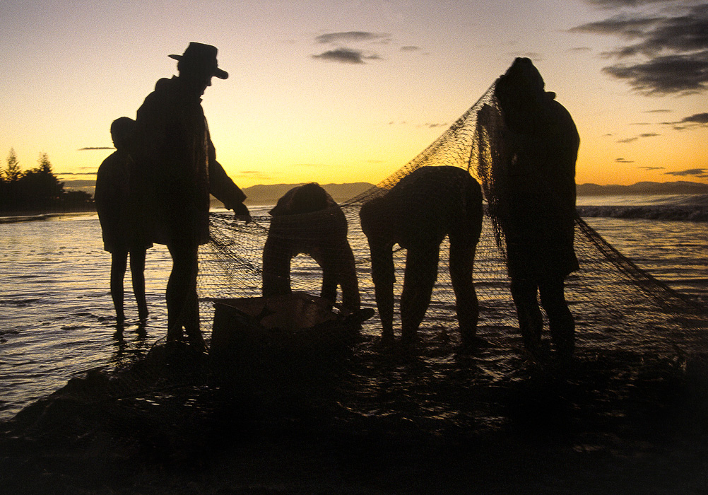 Fishermen sorting their catch on a beach near Byron Bay NSW, Australia.