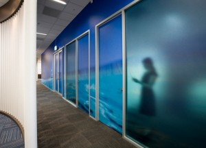 Sydney Water offices at Liverpool NSW. Designed by Custance Associates, Australia