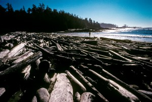 Vancouver Island in British Columbia, Canada has seen a long fought battle between loggers and environmental activists. This beach tells a story of environmental change that is hard to ignore. This is the waste product of logging in the area.