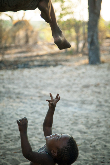 The older children in this bushman village spent a lot of time climbing and sitting along a low branch of the biggest tree. This little boy was too young to climb up so he had his fun trying to catch the feet dangling down. Nhoma, Namibia.