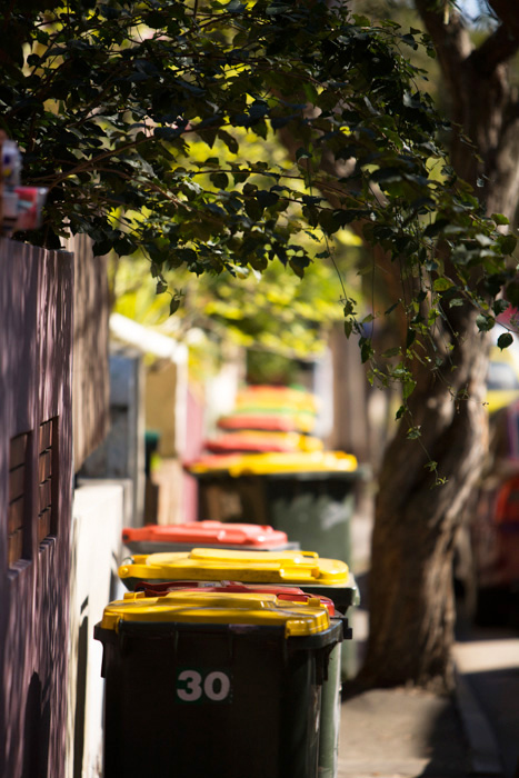 Taken for the annual report of WSN Environmental Solutions, this row of bins added colour to the street. They don't always look this pretty.
