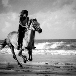 Liz Galloping her horse on Belongil Beach, North of Byron Bay.